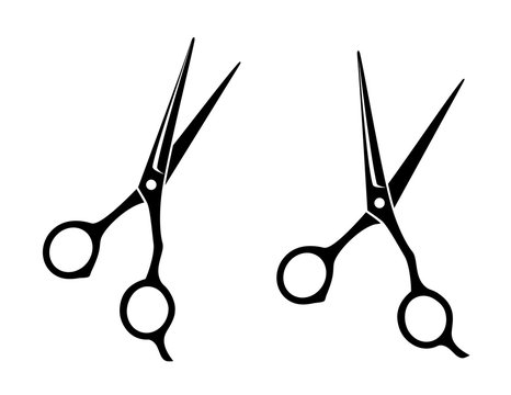 isolated professional scissors