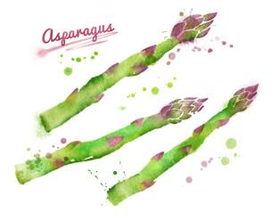 Watercolor asparagus.
