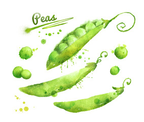 Watercolor peas.