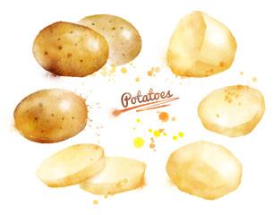 Watercolor potatoes.