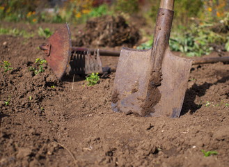 used shovel in front gardening tools, shallow depth of field