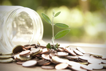 pot with coins saving concept