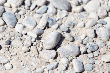 rocks in nature as a background