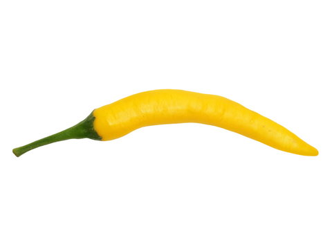 yellow hot chili peppers isolated on white background