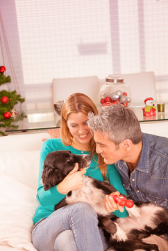 Happy wife and husband joking with their dog in home interior