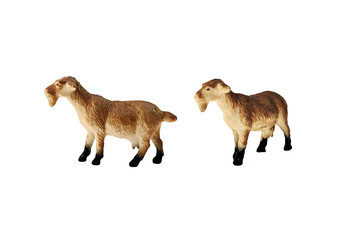 Isolated goat toy. Isolated hornless goat toy side and angle view.
