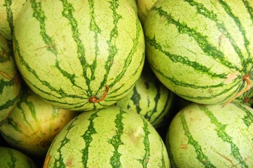 Watermelon background photo
