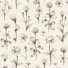 Wild flowers illustration. Seamless pattern