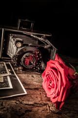 camera rose