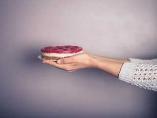 Female hands holding a cheesecake