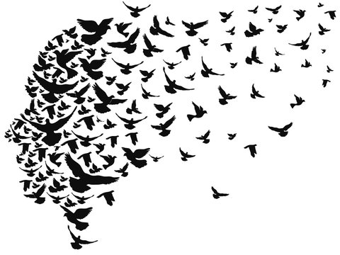 doves flying away with human head