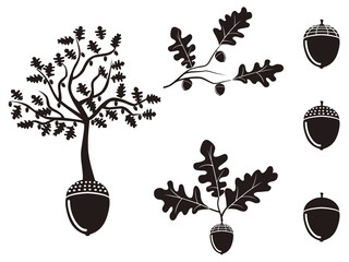 oak acorn silhouettes set