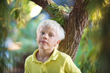 Childhood. Portrait of a  blond boy (7 years ) on a summer day outdoor.