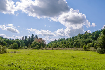 field of grass with woods and perfect blue sky with clouds