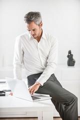 Portrait of a grey hair businessman with beard sitting on his de
