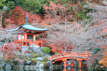 Autumn season,The leave change color of red in Temple