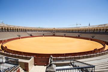 Cerca immagini: matador