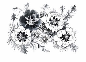 Beautiful monochrome, black and white flower isolated. Hand
