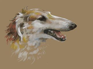 Greyhound animal dog watercolor illustration