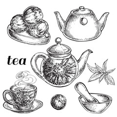 hand drawn tea flower