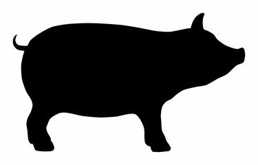 Pig Hog Pork Icon