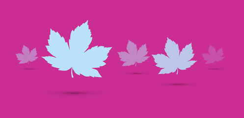 foglie, autunno,