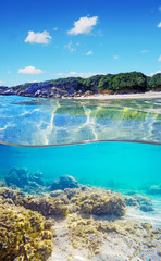 over and under water surface of a tropical beach