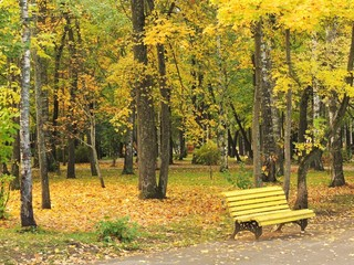 Yellow bench in the autumn Park.