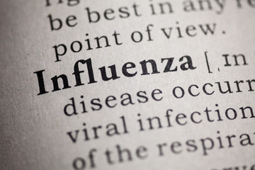 flu and influenza