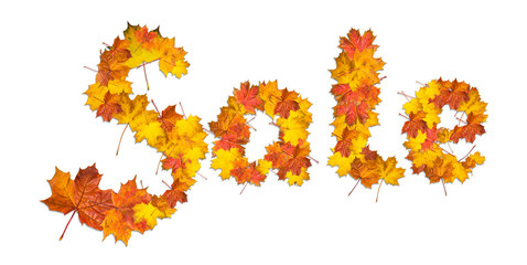 Word Sale made of bright maple leaves