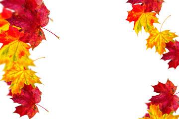 bunte Herbstranken