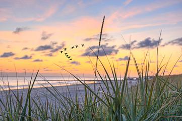 Fototapete - Meer Sonnenuntergang