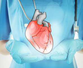 Doctor with stethoscope holding heart