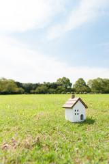 広い芝生の上 一軒家