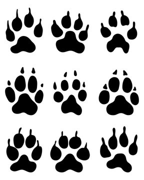 Black print of wolf paw, vector