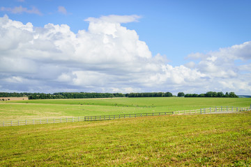 Field and blue sky with cloud background