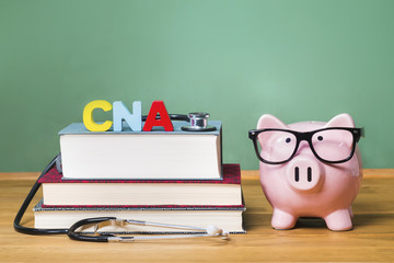 Certified Nursing Assistant CNA theme with pink piggy bank