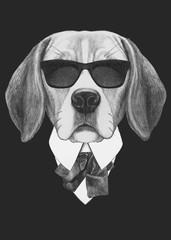 Portrait of Beagle dog in suit. Hand drawn illustration.