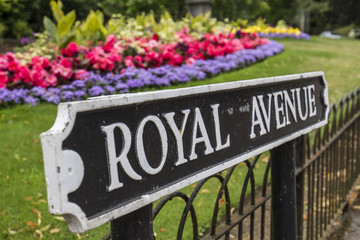 Royal Avenue road sign