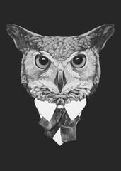Portrait of Owl in suit. Hand drawn illustration.