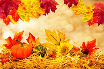 schönes Herbstbild