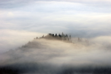 Amazing mountain landscape with dense fog. Carpathian Mountains