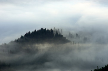 Foto op Textielframe Ochtendstond met mist Amazing mountain landscape with dense fog. Carpathian Mountains