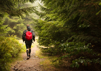 man wearing backpack with red rain cover trekking on the forest trail