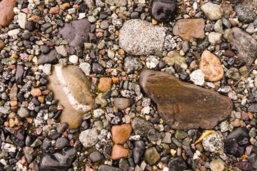 Common Rocks Rivers Edge Alaska Fossils Minerals Solid Rock