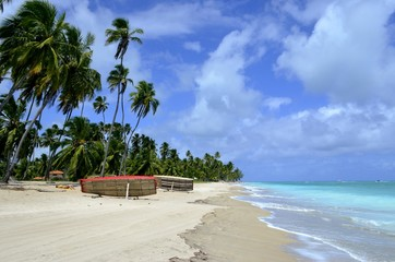 Beautiful tropical beach in Brazil, Maragogi, Alagoas, Nordeste