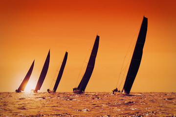 Fototapete - sailing yachts at sunset on the sea