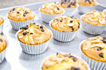 Muffin butter cakes with cashew nut and chocolate chips on top