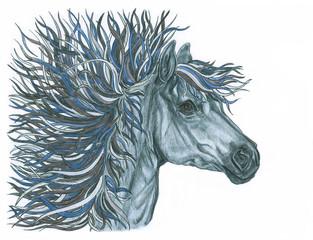Beautiful horse illustration with bright creative mane.