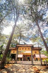 Chinese pagoda (Chua Tau) at Da Lat City, Lam Dong province, Vietnam